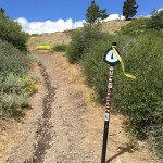 PCT marker at Inspiration Point